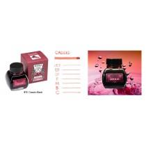 Platinum Premium Bottled Ink Cassis Black