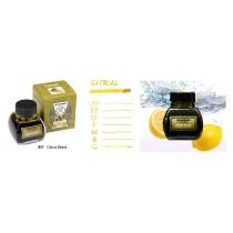 Platinum Premium Bottled Ink Citrus Black