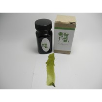 Organics Studio Ernest's Vintage Willow Green Fountain Pen Ink