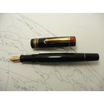 Delta Lucky Fountain Pen