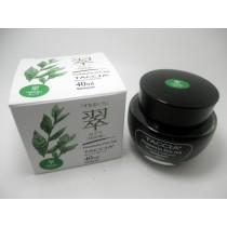 Taccia Bottled Ink Midori (Green)